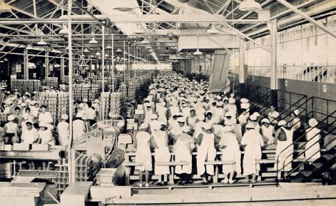 Dole Pineapple Cannery