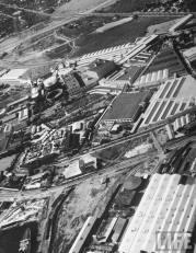 Dole_Cannery-Life-1937