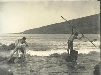 Fishemen-Throw_net-Spear-Kealakekua-1919