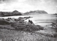 Fishpond Kailua side of Libbyville-1924