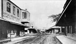 Fort Street looking across King Street-early 1889
