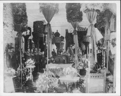 Funeral of King Kalakaua-PP-25-6-010-00001