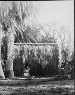 Grass house at Lalani Village, Waikiki-PP-32-4-007