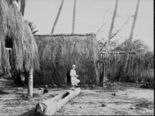 Grass house at Lalani Village, Waikiki-PP-32-4-009