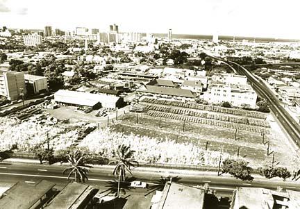 19700520 - Hawaiian Sugar Planters Association property in Makiki. Star-Bulletin BW by Warren Roll.