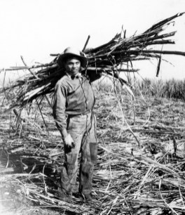 Hamakua Sugar Worker-Christensen