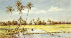 Helen_Whitney_Kelley_-_'Rice_Paddies',_watercolor,_1890