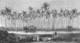 Helumoa_Summer House of King Kamehameha V, Waikiki-(eBay)-1873