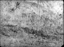 Hikiau before restoration