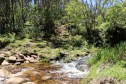 The Hono O Na Pali Natural Area Reserve on Kauai features a stream crossing on the Alakai Swamp Trail