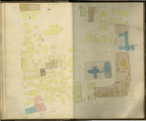 Honolulu and Vicinity-Dakin-Fire Insurance- 11-Map-1906