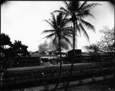 Honolulu_Chinatown_Fire_of_1900_(32),_photograph_by_Brother_Bertram