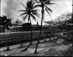 Honolulu_Chinatown_Fire_of_1900_(6),_photograph_by_Brother_Bertram