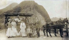 Horse Drawn Buggies at Pali Lookout
