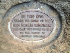 Bingham Tablet