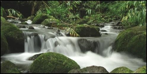 Stream-CWRM