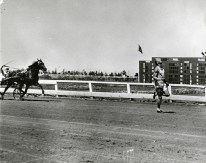 Jesse Owens races a horse on a track in Cuba, 1936.