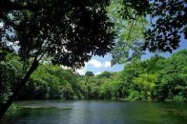 Ka_Wai_O_Pele-Green lake