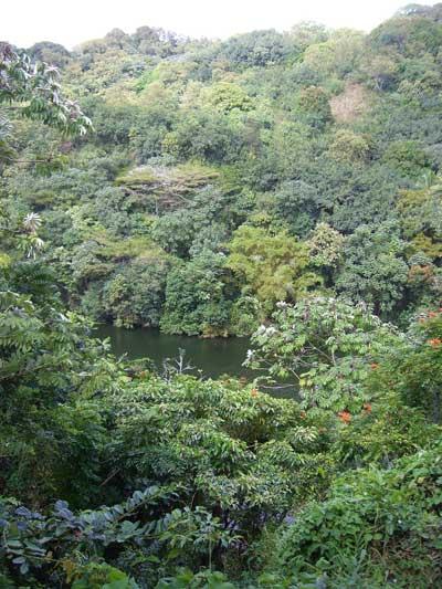 Ka_Wai_O_Pele-Green_Lake