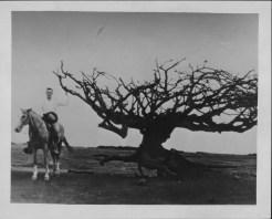 Kahoolawe-PP-46-10-032