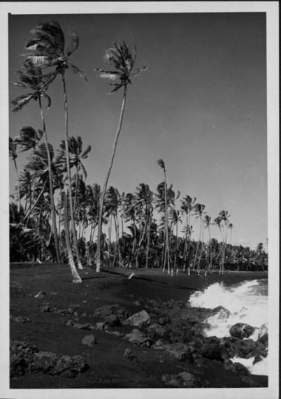 Kaimu Black Sand Beach, Kalapana-HVB-PP-29-9-006