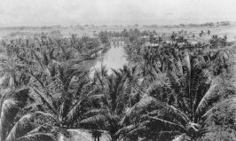 Kakaako-From the cupola of Old Plantation, looking across the fish pond to the Ward's beachfront lands, Kukuluae'o-(avisionforward)