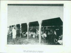 Kalaupapa Dairy-Van Lil in white-NPS