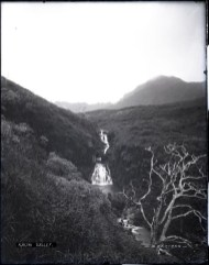Kalihi_Valley-Bertram
