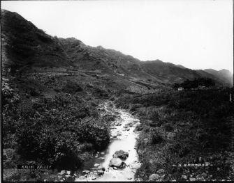 Kalihi Valley-Bertram