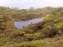 Kiowaiokihawahine (Violet Lake)