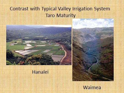 Koloa_Field_System-advantage is sun and maturity rates of staple crops-Hammatt
