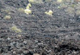 Kuamo'o_Burials_in_lava_rock-WC