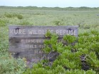 Kure-Wildlife_Refuge-sign-(Forest & Kim Starr)