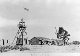 Laysan_Island-1911-(DenverMuseum)