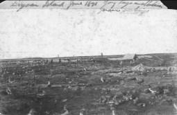 Laysan_Island_Munro-June_1891-(DenverMuseum)