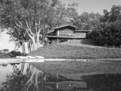 LiljestrandHouse-Pool-HonoluluMagazine