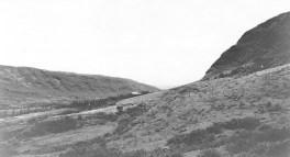 Manoa_Valley-(LyonArboretum)-1920s