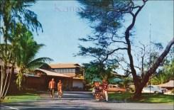 Maui_Palms-entry-(kamaaina56)