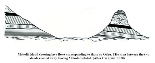 Mokolii lava flows-Jokiel
