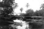 Mokuhinia,_Lahaina-Moku'ula-(WC)-ca._1910