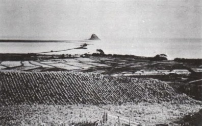 Molii Fishpond-in-background-over pineapple rice-1890-600