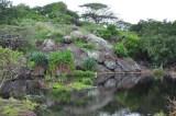 Na_Pohaku-o-Hauwahine-(notsogreathikingblog)