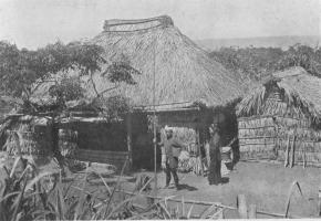Native's House