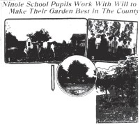 Ninole_School_Garden-SB-April_14,_1917