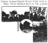Ninole_School_Garden-SB-April_14,_1917