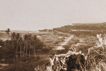 Niu_Valley-Kalanianaole_Highway-(maunalua-net)-1900s