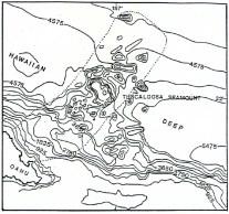 Nuuanu Avalanche-Jokiel