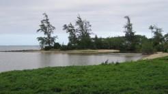 Oahu-Huiluafishpond-sandbar-WC-Bradshaw