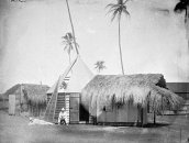 Observation_Huts_in_Honolulu-(copyright-RoyalObservatoryGreenwich)-1874