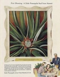 O'keeffe_-_'Pineapple_Bud'-Dole_Ad_1939